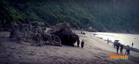 Karang Pantai Parangtritis
