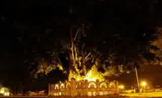 Permalink to Alun-Alun Selatan Yogyakarta