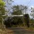 Permalink to Hutan Wanagama Yogyakarta