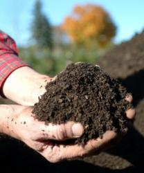 Permalink to Bantul Manfaatkan Sampah Pasar untuk Pupuk Kompos