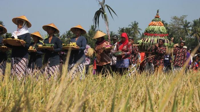 Permalink to Pelatihan Mekanisasi Alat Pertanian Kelompok Tani Bantul