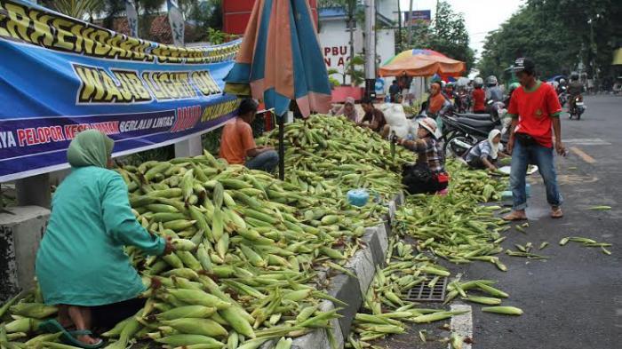Permalink to Penjual Jagung Panen Untung di Malam Tahun Baru
