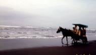 Permalink to Pantai Parangtritis Yogyakarta