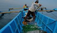 Permalink to Tangkapan Ikan Nelayan DIY Masih Kurang
