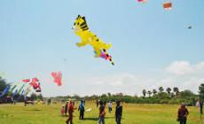 Permalink to Ayo Lur, Liat Festival Layang-layang di Pantai Glagah