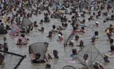 Permalink to Ribuan Orang Nyemplung Bareng ke Kolam Cari Ikan